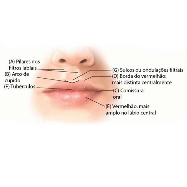 Cirurgia de Aumento de Lábios